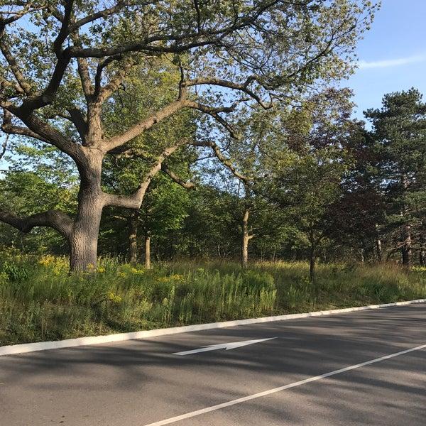 8/27/2017 tarihinde Amy P.ziyaretçi tarafından High Park'de çekilen fotoğraf