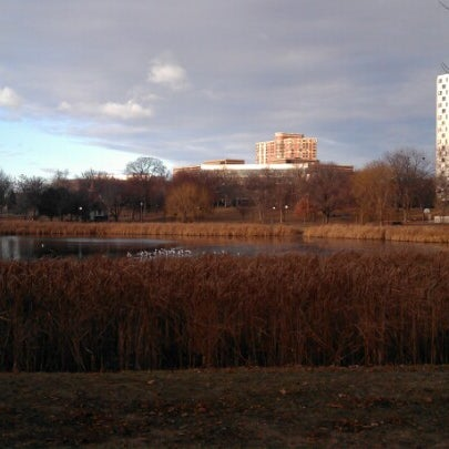 Photo taken at Loring Park by Morgan J. on 12/3/2012