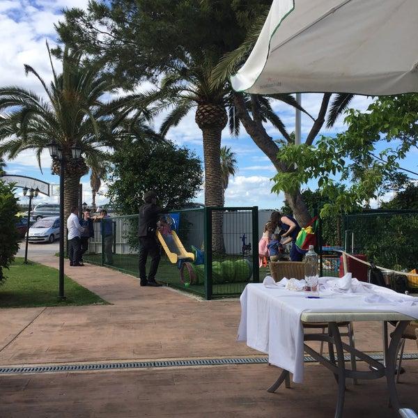Nao borraset pinedo 4 tips de 26 visitantes - Restaurante mediterraneo pinedo ...