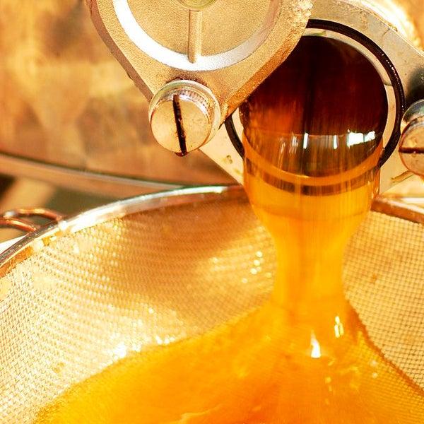 Scorre miele a fiumi al MMape! 🌻🐝🍯