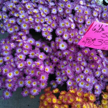 Photo taken at Dane County Farmers' Market by Kat on 10/15/2011