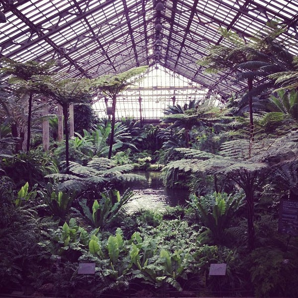 Photo taken at Garfield Park Conservatory by Samuel E. on 5/16/2013
