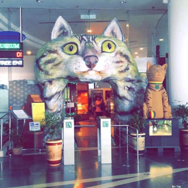 Photo taken at Muzium Kucing (Cat Museum) by colemomok on 12/18/2016