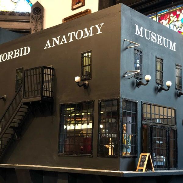 Photos at Morbid Anatomy Museum Pop-Up - Art Museum in New York