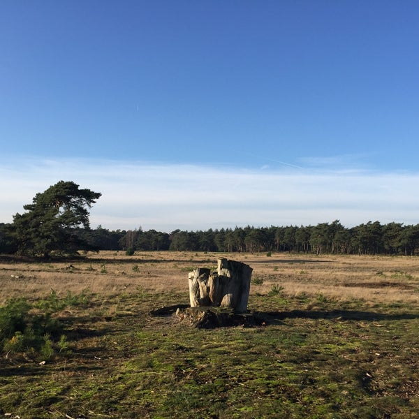 Photo taken at Nationaal Park De Hoge Veluwe by Nevermore on 12/8/2015
