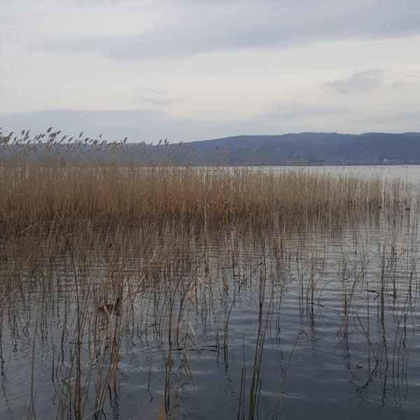 2/2/2018 tarihinde Sahin U.ziyaretçi tarafından Maja Kırkpınar'de çekilen fotoğraf