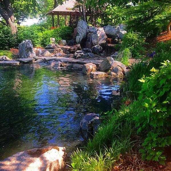 Osaka Garden - Garden
