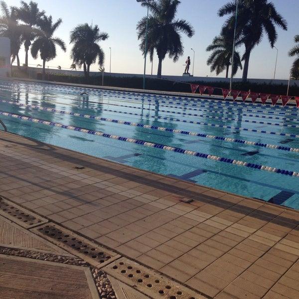Fotos en alberca ol mpica 20 de noviembre 7 tips de for Alberca 20 de noviembre campeche