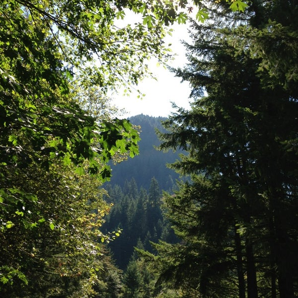 Photo taken at Wahclella Falls Trail by Johnpaul M. on 9/1/2013