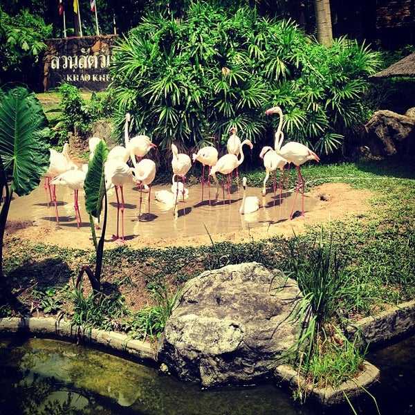 Photo taken at Khao Kheow Open Zoo by Harrisov on 3/18/2013