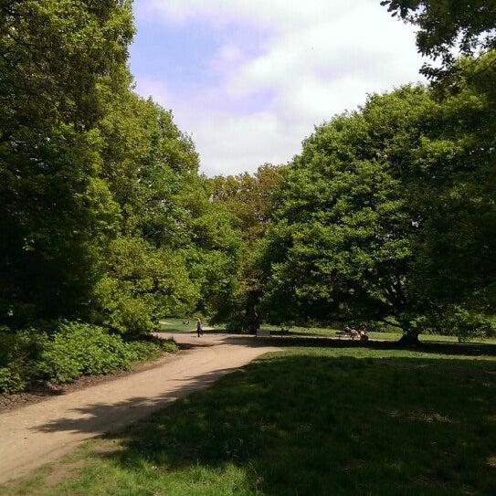 5/19/2013 tarihinde Dima R.ziyaretçi tarafından Hampstead Heath'de çekilen fotoğraf