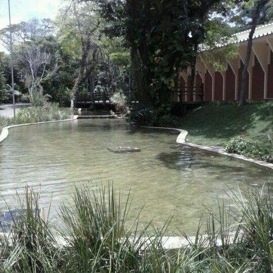 Balne rio municipal de guas de santa b rbara park in for Piscinas v h ramos lda braga