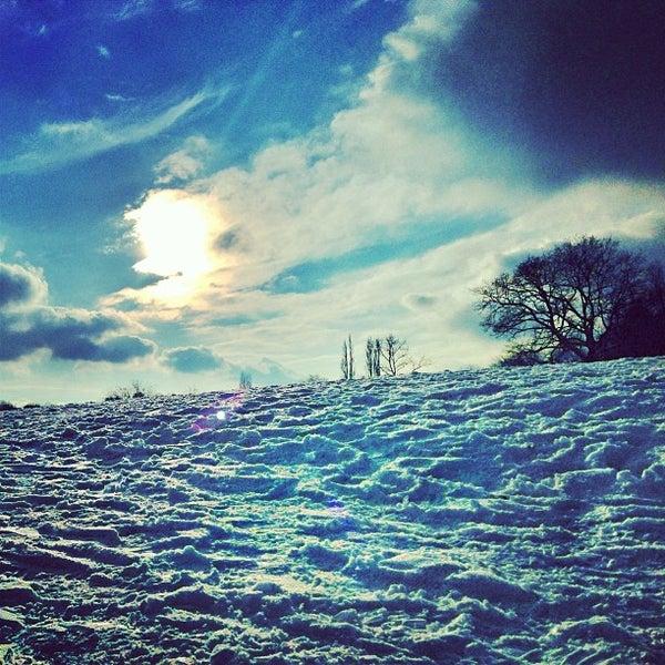 1/21/2013 tarihinde Saul T.ziyaretçi tarafından Hampstead Heath'de çekilen fotoğraf