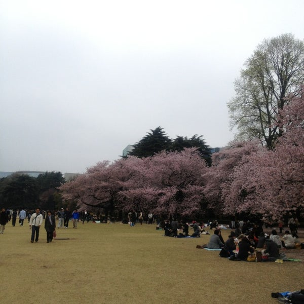 Photo taken at Shinjuku Gyoen by 南北 東. on 3/31/2013