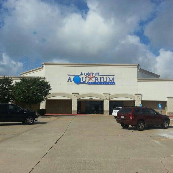Austin Aquarium Northwest Austin Austin Tx