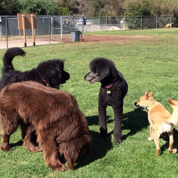 Photo taken at Laguna Canyon Dog Park by Neel K. on 2/16/2014