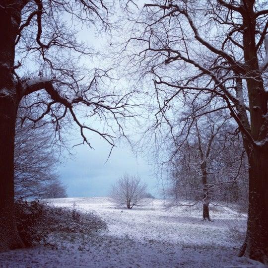 1/14/2013 tarihinde Laura N.ziyaretçi tarafından Hampstead Heath'de çekilen fotoğraf