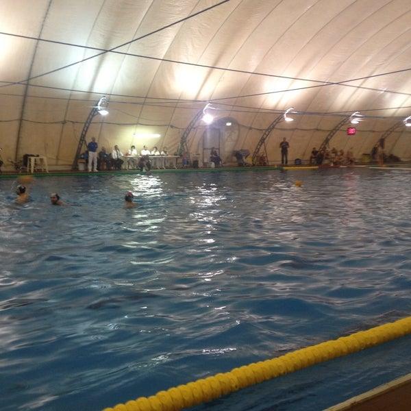 Foto di piscina sterlino murri via augusto murri 113 - Piscina sterlino bologna ...