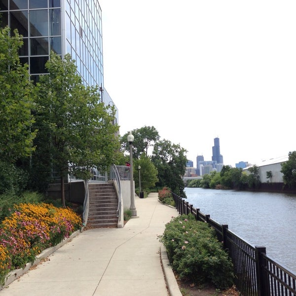 This Whole Foods is built along the river.  If you head out the West exit there is a nicely landscaped walkway and a view of downtown Chicago.