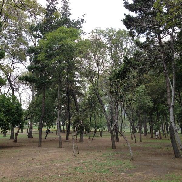 Jardin rep blica del l bano parque para perros en bosque for Ahuyentar perros del jardin