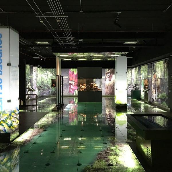 Photo taken at Museo de Jade by Matthew on 5/22/2017