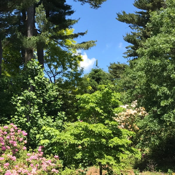 Photo taken at Planting Fields Arboretum by Mark B. on 6/3/2017