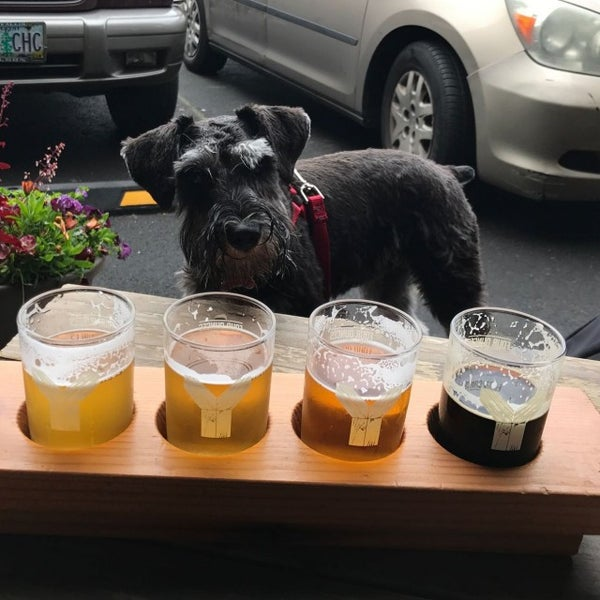 Photo taken at Yachats Brewing + Farmstore by Terry P. on 6/1/2017