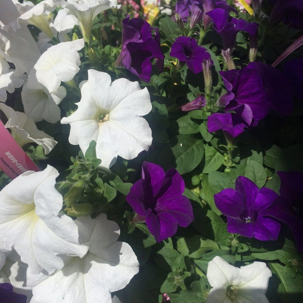 Photo Taken At The Home Depot By Cami D On 5 30 2015