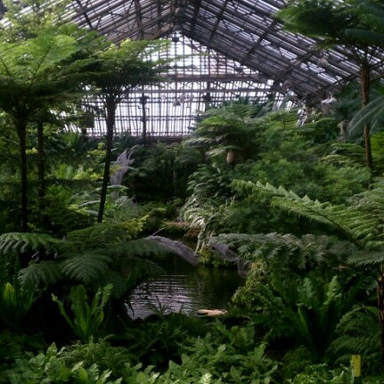 Photo taken at Garfield Park Conservatory by Curtis H. on 10/1/2012