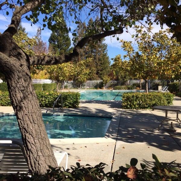 Seven Springs Pool Cupertino Ca