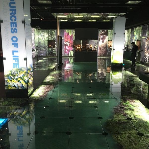 Photo taken at Museo de Jade by Sofinita on 10/29/2017