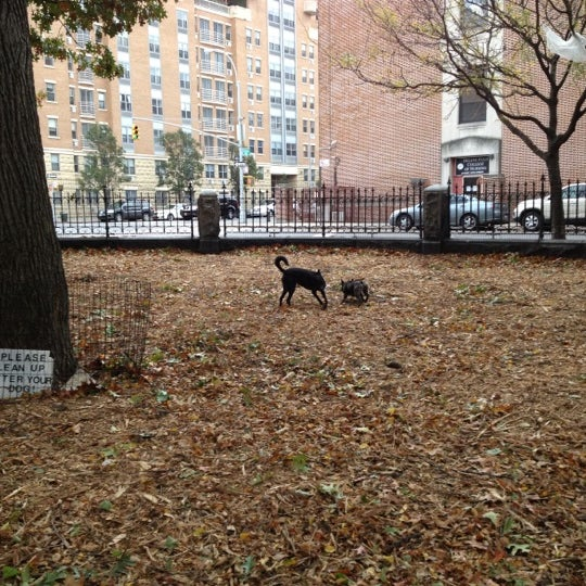 Photo taken at Marcus Garvey Park - Dog Run by Lily on 10/31/2012