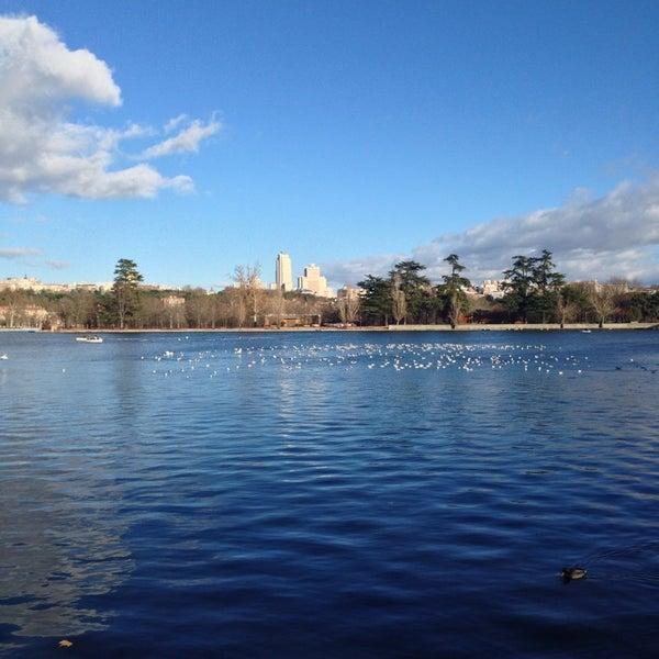 Photo taken at Lago de la Casa de Campo by Jose B. on 12/26/2013