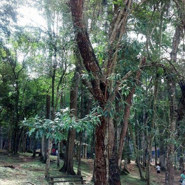 Photo taken at Parque Estadual do Jaraguá by Marcos R. on 4/21/2013