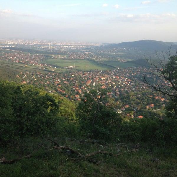5/5/2014 tarihinde Bálint K.ziyaretçi tarafından Nagy-Kevély'de çekilen fotoğraf