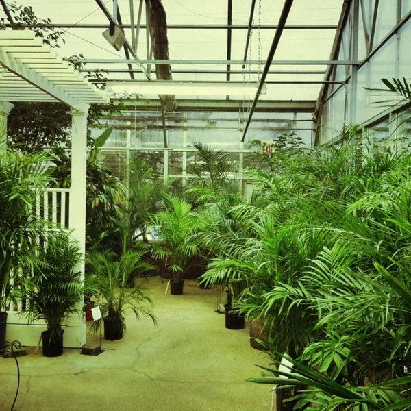 Photos at Merrifield Garden Center - Garden Center in Fairfax