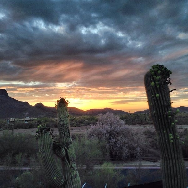 Mira Vista Resort Marana Arizona