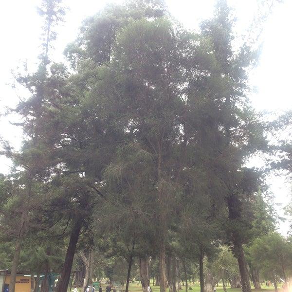 Foto tomada en Parque El Ejido por Maria Rossana H. el 11/14/2016