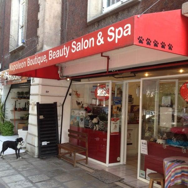 napoleon boutique beauty salon spa pet store in roma