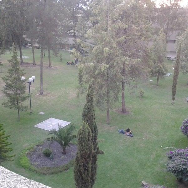 Uam xochimilco el zapata jard n parque calz del hueso 1100 col villa quietud for Jardin xochimilco