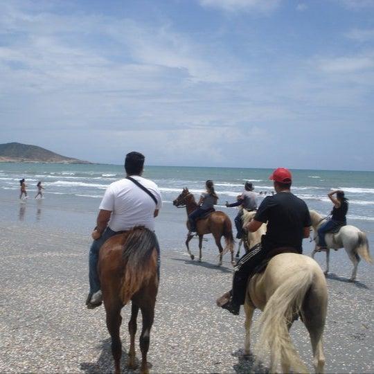Averigua por nuestras cabalgatas por la montaña y hacia la playa. Conoce nuestro criadero de avestruces.Disfruta de esta maravillosa experiencia en compañía de tus amigos y de toda la familia