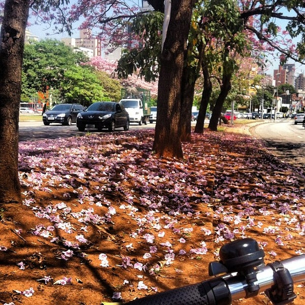 Photo taken at Avenida Brasil by Pit P. on 10/31/2012