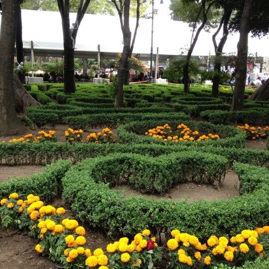 Photo taken at Jardín Hidalgo by Jesus B. on 11/3/2012