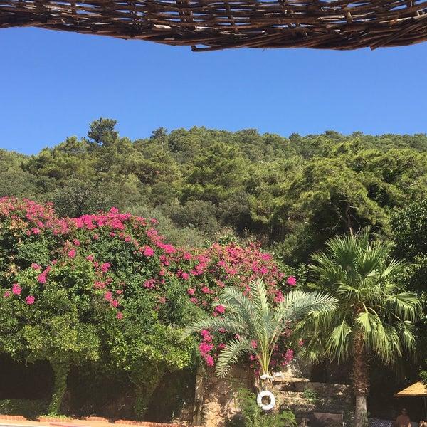 7/10/2016 tarihinde Saadet K.ziyaretçi tarafından Paradise Garden Butik Hotel'de çekilen fotoğraf