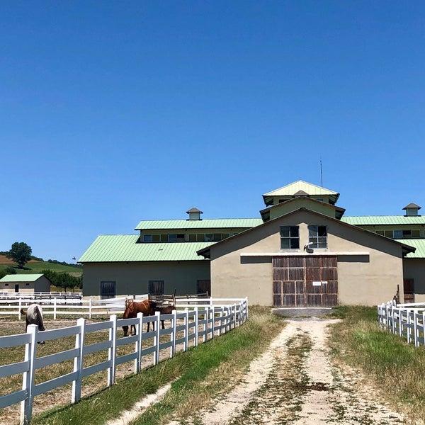 6/13/2018 tarihinde BARIŞ Y.ziyaretçi tarafından Olimpos At Çiftliği'de çekilen fotoğraf