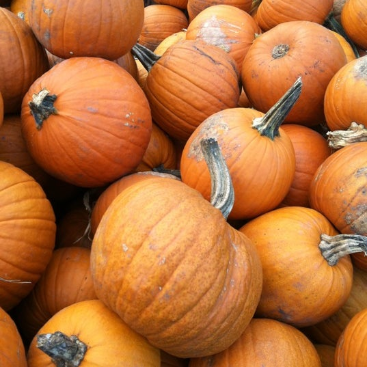 Photo taken at Auntie El's Farm Market by William P. on 10/6/2012