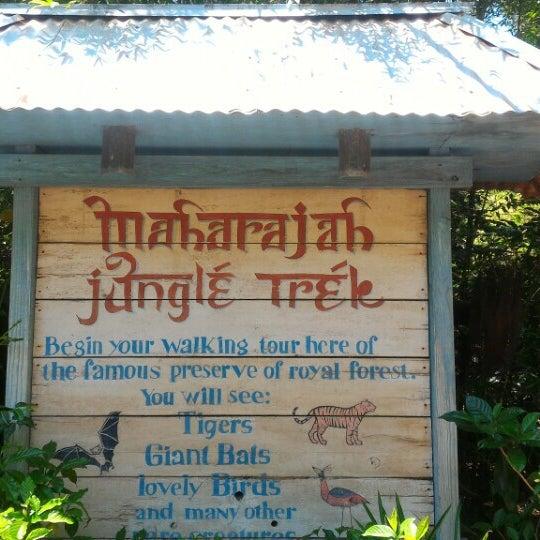 Photo taken at Maharajah Jungle Trek by Sara de Hollanda on 5/8/2016