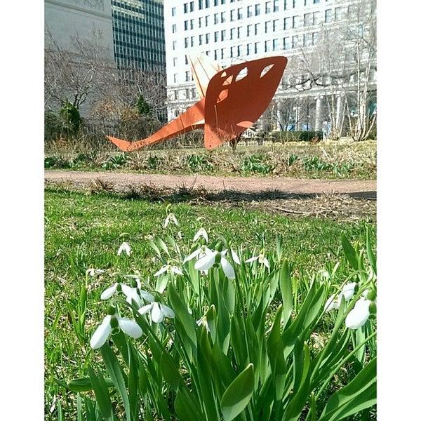 Photo taken at Sculpture Garden - Art Institute of Chicago by Jim W. on 4/9/2014