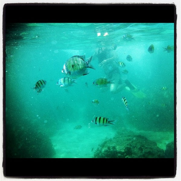 Photo taken at Phi Phi Island by Soon S. on 2/6/2013