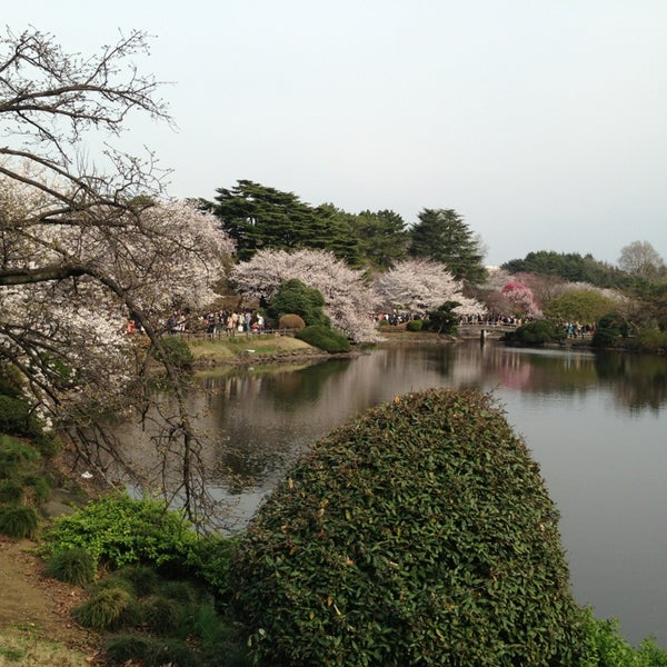 Photo taken at Shinjuku Gyoen by Masahiko M. on 3/23/2013
